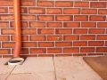colonial-tuckpointing-damp-proofing-before-after-image-set-09-3